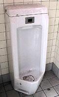 toilet2.jpg