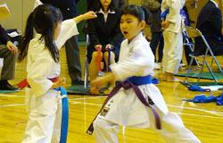 karateman2.jpg