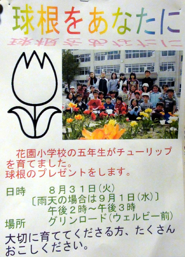 hanazonosyou-kyukon.jpg