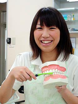 smile-sakai-harada.jpg