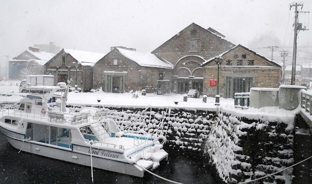 snow1121.jpg