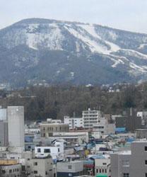 0514sakura2.jpg