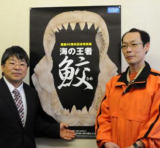 """水族館40周年記念 """"サメ""""の特別 ..."""