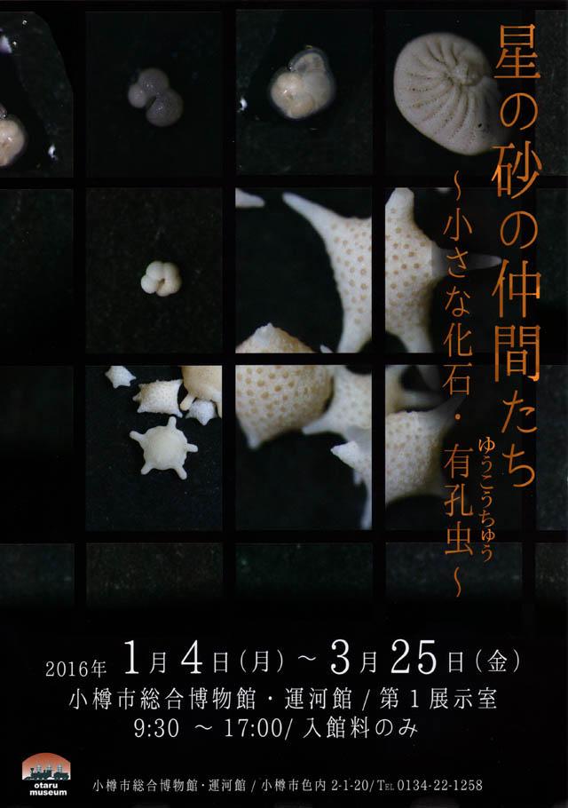 20160104yukochu.jpg