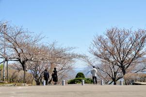 0504ryokukaen1.jpg