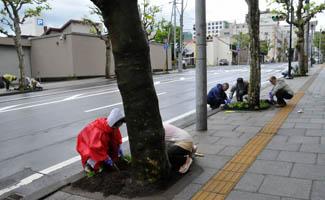 flowerstreet4.jpg