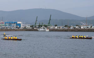 regatta2.jpg