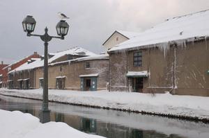 snow-unga2.JPG