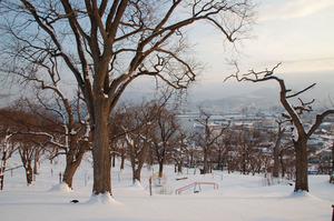 wintertemiyapark2010.JPG